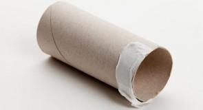 5 Idées de créations avec des rouleaux de papier toilette !