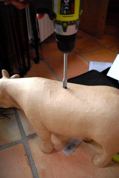 Faites un trou bien régulier au milieu du dos de la vache