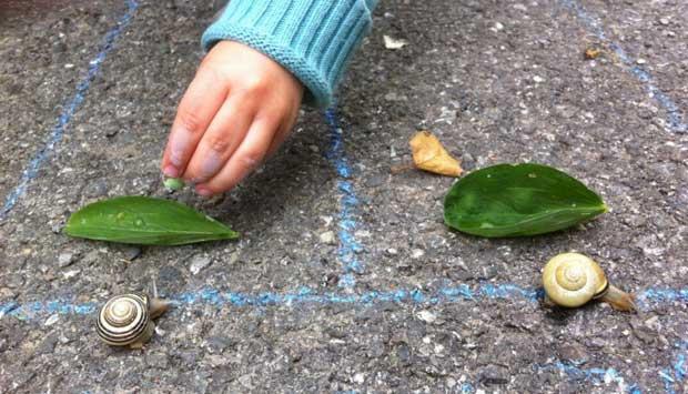 Une petite course d'escargots pour occuper votre tout-petit