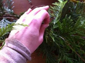 Attachez ensemble deux branches (ici du thuya) à l'aide du fil de laiton.